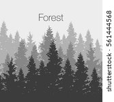 wild coniferous forest... | Shutterstock .eps vector #561444568