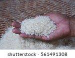 jasmine rice in the hands of... | Shutterstock . vector #561491308