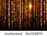 christmas digital glitter... | Shutterstock . vector #561529870