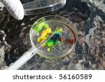 a research scientist examines a petri dish with a culture growing inside - stock photo