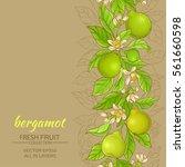 bergamot vector background | Shutterstock .eps vector #561660598