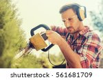 Cutting a hedge with electrical hedge trimmer. - stock photo