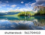 emerald lake in banff national... | Shutterstock . vector #561704410