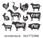 Farm Animals  Vector Set Icons...
