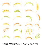 concept for organic products... | Shutterstock .eps vector #561773674