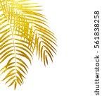 Beautifil Palm Tree Leaf ...