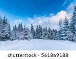 winter forest with thick layer... | Shutterstock . vector #561869188