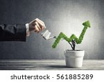 hand of woman watering small... | Shutterstock . vector #561885289