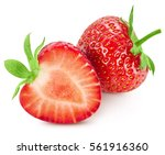 strawberry isolated on white... | Shutterstock . vector #561916360