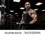 brutal strong athletic men... | Shutterstock . vector #561920044