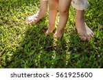 Mother And Baby Feet Walking O...