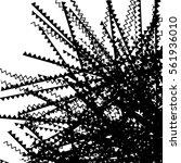 random edgy  zigzag  lines... | Shutterstock .eps vector #561936010