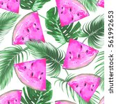 tropical vector illustration... | Shutterstock .eps vector #561992653