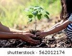asian little girl helping his...   Shutterstock . vector #562012174