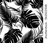 tropical seamless vector floral ... | Shutterstock .eps vector #562023508