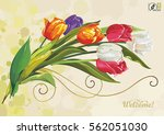 vintage greeting card with... | Shutterstock .eps vector #562051030