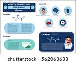 set of health benefits of... | Shutterstock .eps vector #562063633