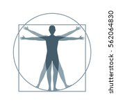 cartoon silhouette vitruvian... | Shutterstock .eps vector #562064830