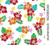 hibiscus flower pattern | Shutterstock .eps vector #562083160