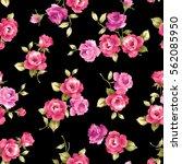 rose illustration pattern | Shutterstock . vector #562085950