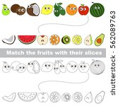 fruits and their slices set to... | Shutterstock .eps vector #562089763