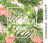 summer time sale banner frame... | Shutterstock .eps vector #562108129