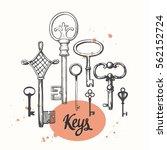 vector set of hand drawn... | Shutterstock .eps vector #562152724