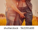 gay couple outdoors | Shutterstock . vector #562201600
