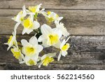 white daffodils at china vase... | Shutterstock . vector #562214560