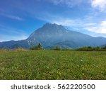 beautiful mount of kinabalu... | Shutterstock . vector #562220500