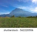 beautiful mount of kinabalu... | Shutterstock . vector #562220506