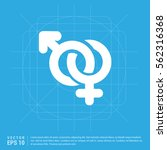 male and female symbols gender... | Shutterstock .eps vector #562316368