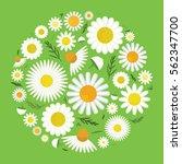 vector illustration of... | Shutterstock .eps vector #562347700