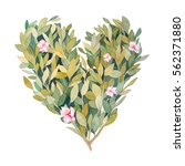 watercolor spring heart. hand... | Shutterstock . vector #562371880
