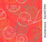 fruits  orange  lemon  apple ... | Shutterstock .eps vector #562407394