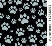paw print seamless. traces of... | Shutterstock .eps vector #562430038