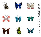 tropical butterfly icons set....   Shutterstock .eps vector #562463998