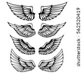 Vintage Wings Isolated On Whit...
