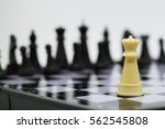 One  Chess Pieces Staying...