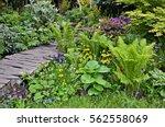 Tropical Bog Garden With Mixed...