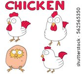 vector set of chicken | Shutterstock .eps vector #562565350