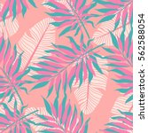 summer exotic floral tropical... | Shutterstock .eps vector #562588054