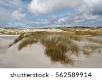 In The White Dunes Of The Nort...
