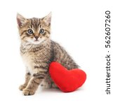 Stock photo kitten with toy heart isolated on a white background 562607260