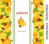 ripe apricot vertical seamless... | Shutterstock .eps vector #562619863