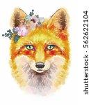 cute little fox. animal print.t ... | Shutterstock . vector #562622104