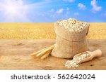 oat flakes in sack. ears of...   Shutterstock . vector #562642024