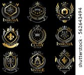 heraldic coat of arms created... | Shutterstock .eps vector #562643494