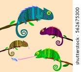 set of colorful chameleons...
