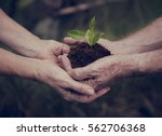 environmental ecology plant...   Shutterstock . vector #562706368